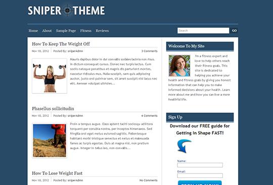 Snipper Theme - Theme cho Google Adsense